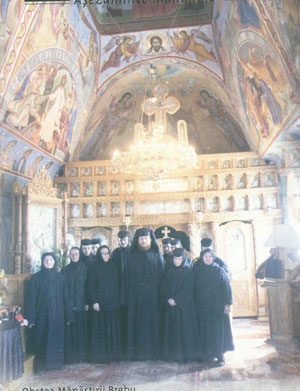 Obstea Manastirii Brebu