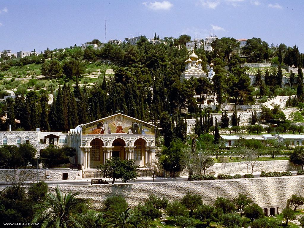Image result for MUNTELE MASLINILOR IERUSALIM