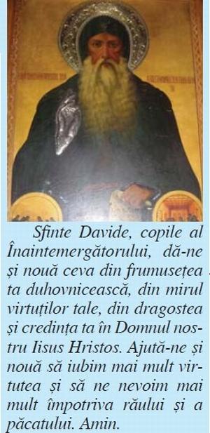 Sfantul Cuvios David - Osios David