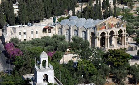 Gradina Ghetsimani - in partea stanga a Bisericii Tuturor Natiunilor