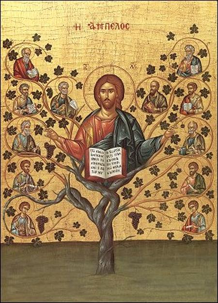 Vita de vie - chip al lui Hristos