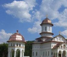 Manastirea Cartisoara