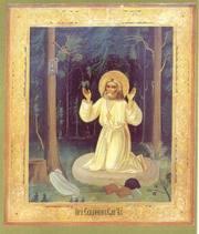 Bucuriile duhovnicesti