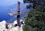 Pomul din care a fost facuta Sfanta Cruce