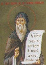 Slujba Sfantului Vasile de la Poiana Marului