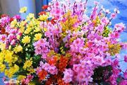 Flori spirituale