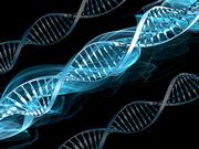 Bioetica - etica traita