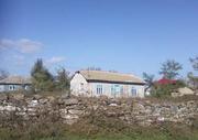 Satul Nuntasi intre adevar si istorie