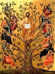 Duminica Sfintilor Parinti dupa trup ai Domnului
