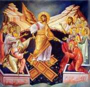 Paradoxul invierii