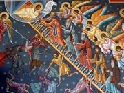 Predica la Duminica Sfantului Ioan Scararul