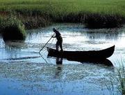 Pelerinaj in Delta Dunarii