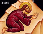 Organele duhovnicesti de simt