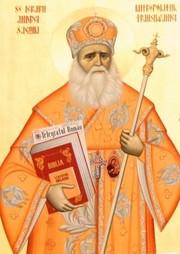 Mitropolitul Andrei Saguna, in viziunea lui Nicolae Iorga