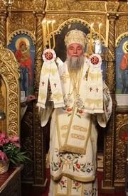Pastorala Nasterii Domnului 2017 - IPS Irineu