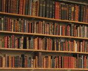 Stiinta teologica si teologia stiintifica