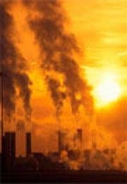 Criza ecologica