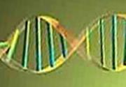 Clonarea, crearea si folosirea de embrioni