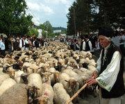 Traditii si obiceiuri de Sfantul Dumitru